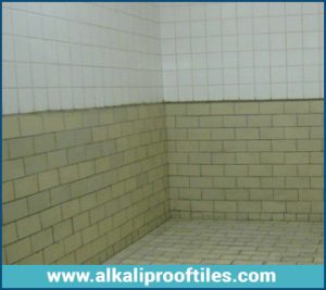 CORROSION RESISTANT TILES